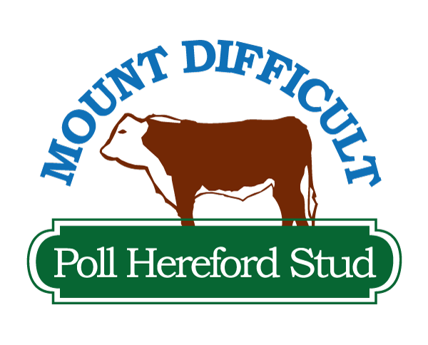 Mount Difficult Poll Hereford Studs